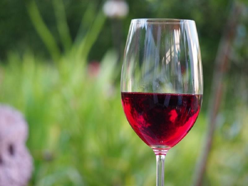 bustle_wine