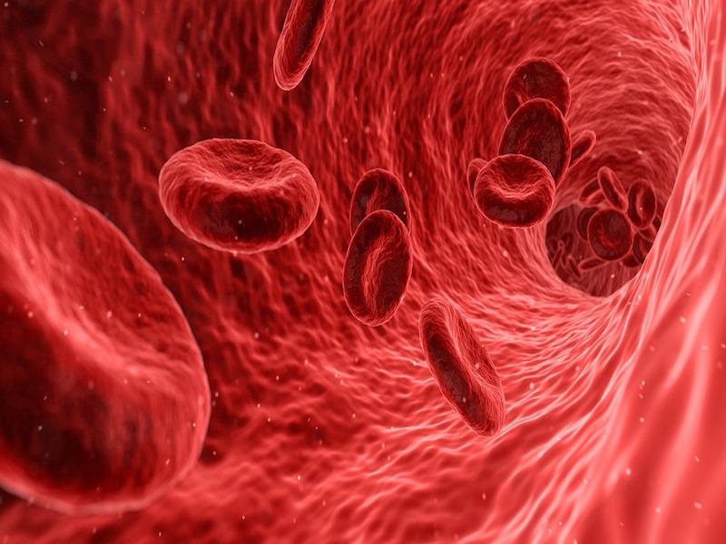 Blood clot vomit during pregnancy